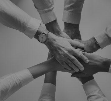 Les 6 principaux organismes s'adressant aux professionnels francophones du développement de carrière du Québec