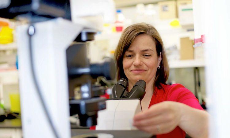 Les femmes sont encore sous-représentées en sciences et génie