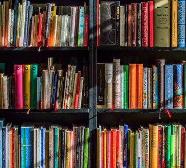 Parmi tous les livres publiés dernièrement, en voici 6 qui ont retenu notre attention
