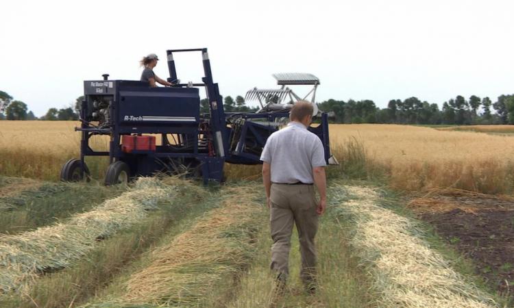 Le milieu agricole réfléchit au vieillissement de la main-d'oeuvre