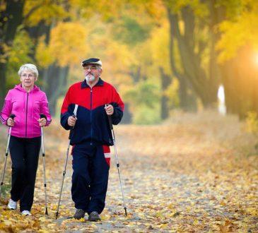 Le boom des seniors dans le marché du travail canadien