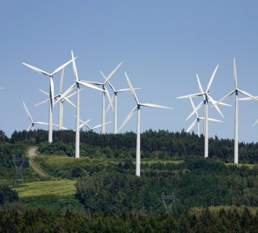 Énergies vertes: croissance importante des emplois