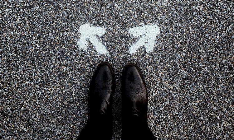 La souplesse psychologique, l'alliée indispensable du choix scolaire et professionnel
