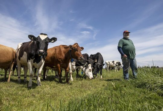 Pénurie de main d'oeuvre : la C.-B. à la recherche de 8000 travailleurs agricoles