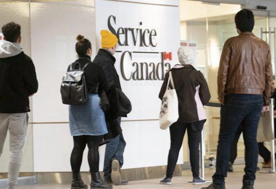 Les immigrants davantage surqualifiés que les autres travailleurs au Canada