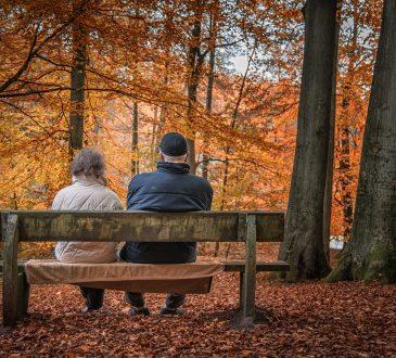 6 études en lien avec la retraite