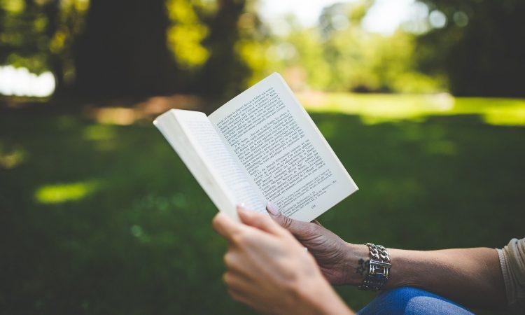 4 suggestions de livres pour les vacances!